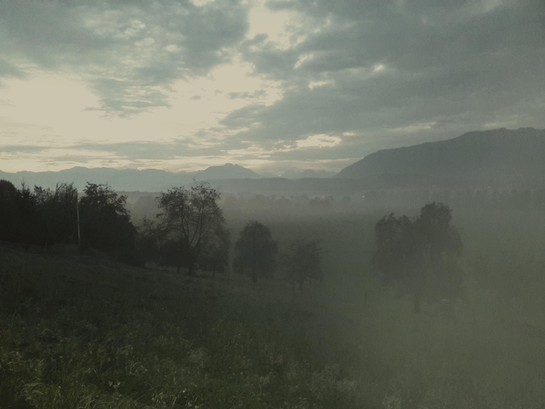 morgenstimmung-im-sg-rheintal